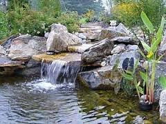 Строительство водоема на частном участке